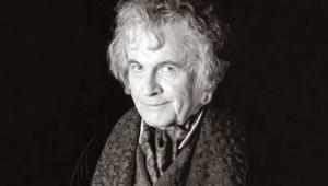 Bilbo le hobbit, Peter Jackson