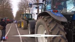 """Crise agricole : le commissaire européen Phil Hogan assure avoir pris """"toute la mesure de la crise"""""""