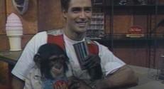 C'était un 30 septembre : Bocco, le singe animateur de TF1 (24/09)