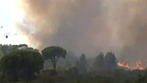 incendie puget sur argens 05 juillet 05