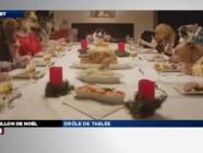 ZAPNET - Drôle de tablée pour Noël !