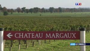 Le 13 heures du 24 août 2014 : Zoom sur : Au coeur des vignobles fran�s les plus prestigieux - 1523.351