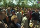 Le 20 heures du 29 juillet 2015 : Les actions coup de poing des éleveurs ont - 476