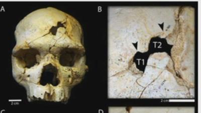 meurtre à la préhistoire