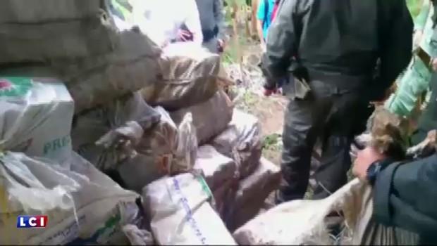"""Colombie : 8 tonnes de cocaïne saisies, """"la plus importante dans l'histoire du pays"""""""