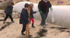 Le 13 heures du 22 mai 2015 : Nettoyage des plages : les écoliers sur le pont - 1534