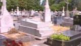 Canicule : vertigineuse estimation des Pompes funèbres