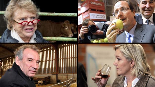 Eva Joly, François Hollande, François Bayrou, Marine Le Pen.
