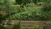 Pologne : enseveli par les nazis, un train contiendrait des armes et des bijoux