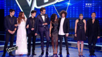 *the voice : la plus belle voix en streaming