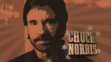 Un pont Chuck Norris en Slovaquie ?