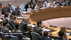 Syrie : le Conseil de sécurité adopte un nouveau plan de paix