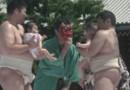 Des bébés sumo au Japon