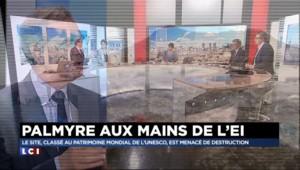 "Syrie : à Palmyre, les djihadistes sont ""inattaquables"""