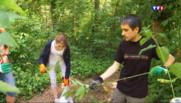Le 20 heures du 3 juillet 2015 : Au collège, on apprend à survivre dans la nature - 1757