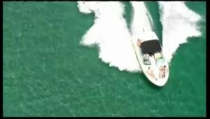 Plus de 15.000 requins près des côtes de la Floride