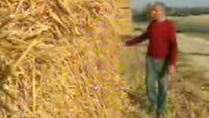 Aide aux agriculteurs larme narrive pas satisfaire la demande