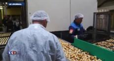 Biscuiterie Jeannette : l'offre de reprise validée par le tribunal de commerce