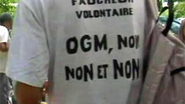 OGM faucheurs volontaires