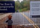 Un enfant déguisé en ourson s'agrippe à la grille d'un zoo fermé à cause du shutdown américain le jeudi 10 octobre.