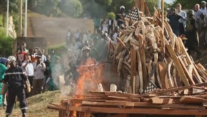 défenses d'éléphants brûlées