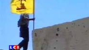 liban hezbollah homme porte drapeau