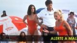Et Si Pamela Anderson Revenait Dans Alerte À Malibu ?