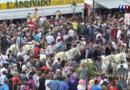 Le 13 heures du 25 mai 2015 : Bouches-du-Rhône : les gitans célèbrent Sara la noire - 136