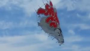Un cerf-volant s'écrase dans la foule pendant un festival au Japon