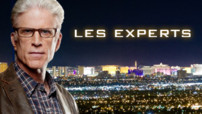 Les experts Las Vegas
